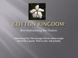 Cotton Kingdom: