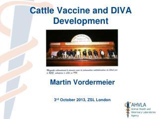 Cattle Vaccine and DIVA Development