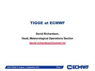 TIGGE at ECMWF