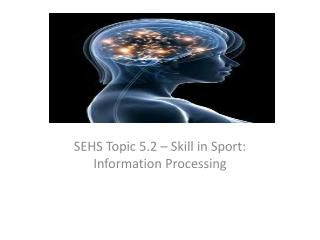 SEHS Topic 5.2 – Skill in Sport: Information Processing