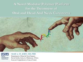 A Novel Modular Polymer Platform  for the Treatment of  Oral and Head And Neck Carcinoma