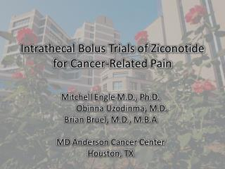 Intrathecal  Bolus Trials of  Ziconotide  for Cancer-Related Pain