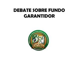 DEBATE SOBRE FUNDO GARANTIDOR