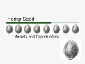Hemp Seed