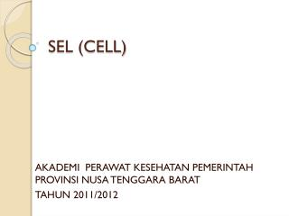 SEL (CELL)
