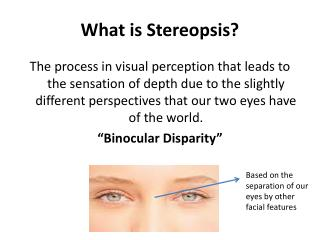 What is  Stereopsis ?