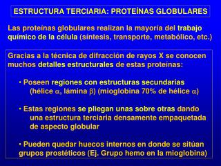 ESTRUCTURA TERCIARIA: PROTE NAS GLOBULARES