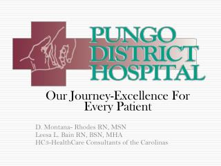Our Journey-Excellence For Every Patient D. Montana- Rhodes RN, MSN Leesa L. Bain RN, BSN, MHA