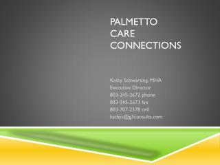 Palmetto  care  connections