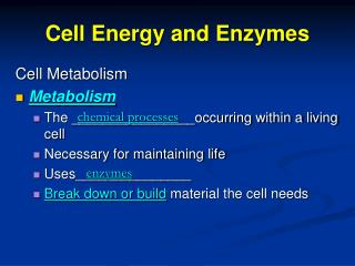 Cell Energy and Enzymes