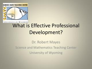 What is Effective Professional Development?