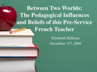 Between Two Worlds:   The Pedagogical Influences and Beliefs of this Pre-Service French Teacher