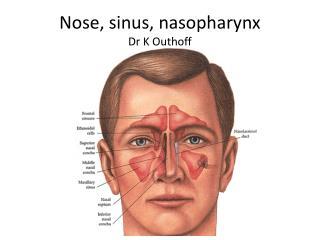 Nose, sinus, nasopharynx Dr K Outhoff