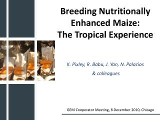 Breeding Nutritionally Enhanced Maize:  The Tropical Experience