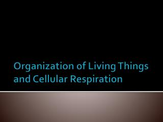 Organization of Living Things and Cellular Respiration