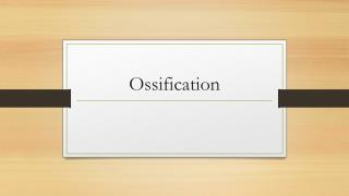 Ossification