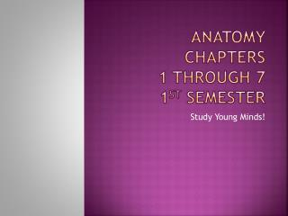 Anatomy Chapters  1 through 7 1 st  semester