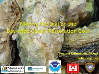 Moving the Dial on the Bay-wide Oyster Restoration Goal