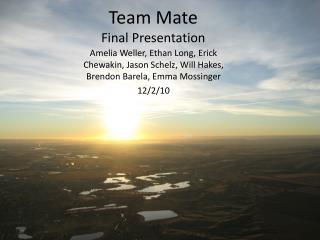 Team Mate Final Presentation
