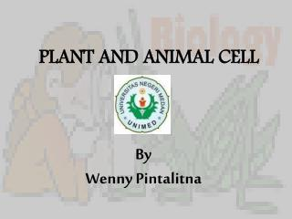PLANT AND ANIMAL CELL By Wenny Pintalitna
