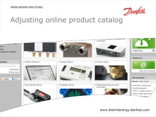 Adjusting online  product catalog