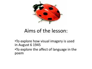 Aims of the lesson: