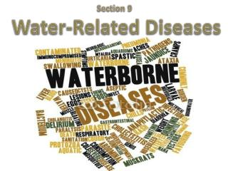 Section 9  Water-Related  Diseases
