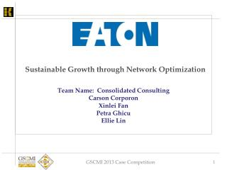 Sustainable Growth through Network Optimization
