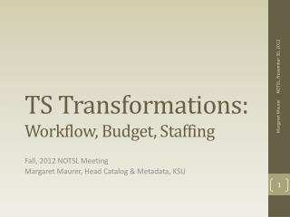 TS Transformations: Workflow, Budget, Staffing