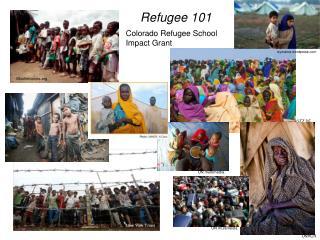 Refugee 101