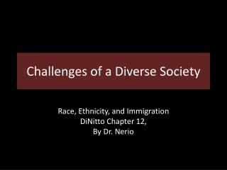 Challenges of a Diverse Society