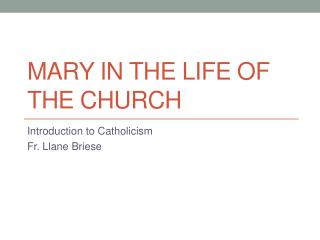Mary in the life of the church