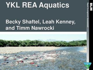 YKL REA Aquatics Becky  Shaftel , Leah Kenney, and  Timm Nawrocki