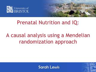 Prenatal Nutrition and IQ:  A causal analysis using a  Mendelian randomization approach