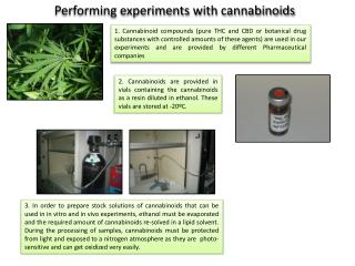 Performing experiments with cannabinoids