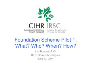 Foundation Scheme Pilot 1: What? Who? When? How?