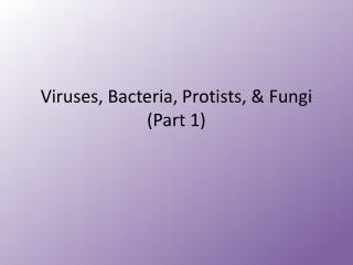Viruses, Bacteria, Protists, & Fungi (Part 1)