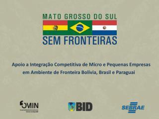 Apoio a Integra��o Competitiva de Micro e Pequenas Empresas