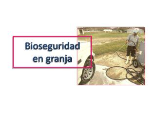 Bioseguridad en granja