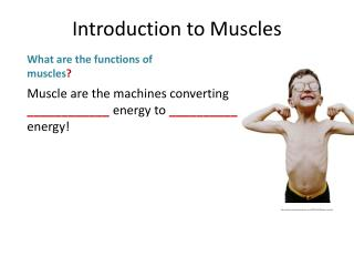 Muscle are the machines converting  ____________ energy to  __________ energy!