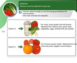 Vitamins V itamins must be obtained through diet.