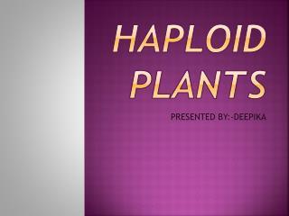 HAPLOID PLANTS