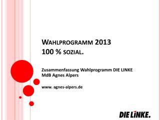 Wahlprogramm 2013 100 % sozial.