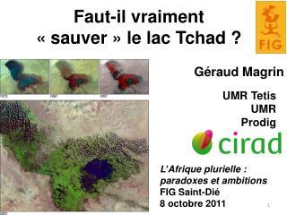 Faut-il vraiment  «sauver» le lac Tchad ?
