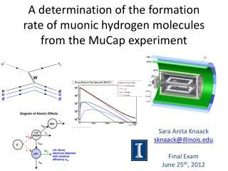 Sara Anita Knaack sknaack@illinois.edu Final Exam June 25 th , 2012