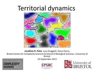 Territorial dynamics