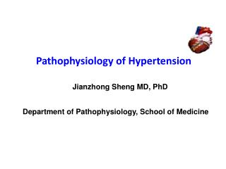 Pathophysiology of Hypertension