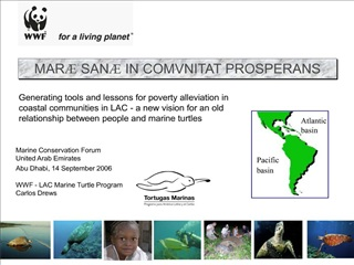 Marine Conservation Forum United Arab Emirates Abu Dhabi, 14 September 2006     WWF - LAC Marine Turtle Program Carlos D