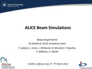 ALICE Beam Simulations