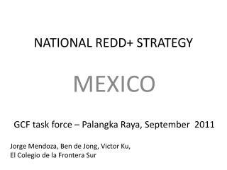NATIONAL REDD+ STRATEGY